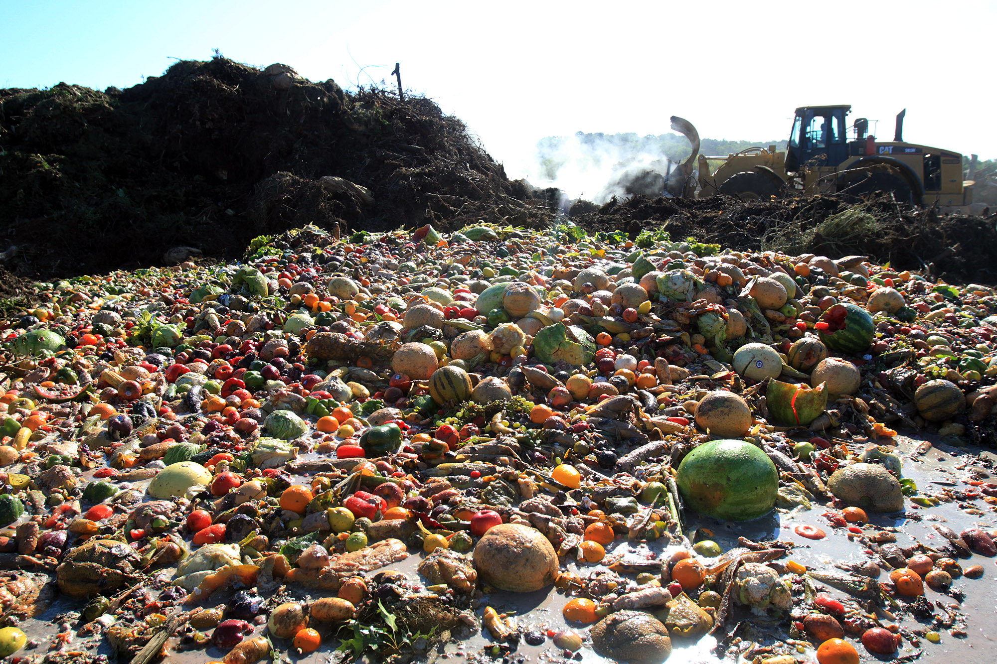 Food Waste In The UK Amounts To 10.3 Billion Tons In 2020